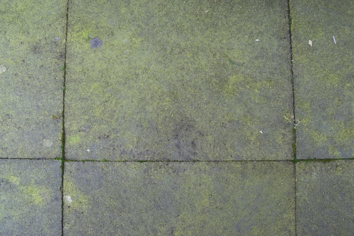 Tegels Tuin Schoonmaken : Tuintegels schoonmaken en groene aanslag verwijderen klus