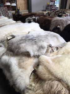schapenvachten en huiden